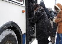 Женщина, родившая в новосибирском троллейбусе, отказалась от своей дочери