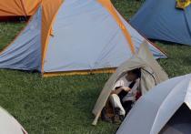 Число школьников в детско-юношеских туристических кружках сократилось на 40%