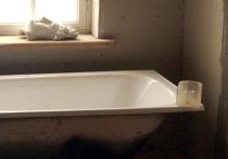 Змея заползла к москвичам, чтобы принять ванну