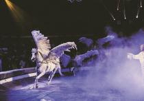 Секреты «вечернего платья» для цирковых животных