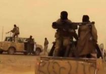Американские спецназовцы высадились на гору Синджар