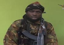 «Боко Харам»: как локальная группировка исламистов стала глобальной угрозой?