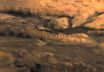 Лучшее доказательство жизни на Марсе нашли в метеорите на Земле