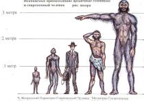 В Южной Африке обнаружили останки гигантского человека, но ученые стараются забыть о находке
