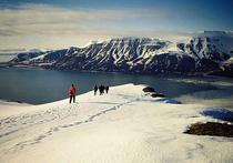 Дания хочет через ООН получить в Арктике участок шельфа с Северным полюсом