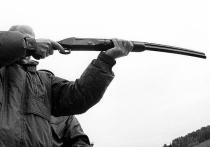 Убийство на охоте: руководителя ФМС застрелил друг, которого критиковали подчиненные