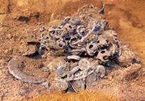 Археологи нашли «новогодний» клад эпохи хана Батыя