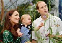 Жена принца Уильяма Кейт плохо переносит вторую беременность