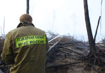 МЧС обещает:  смог от горящих торфяников  в соседних областях  не накроет столицу