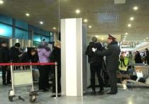 Бомба в аэропорту «Домодедово»: пьяная шутка, которую восприняли всерьез