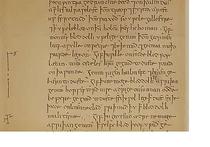 Средневековый эликсир на вине и чесноке уничтожает золотистый стафилококк