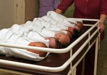 О пропаже младенца около 14 часов сообщила в полицию заведующая городским роддомом, после чего правоохранители стали принимать меры к розыску, к ним традиционно присоединилась отряд «Лиза Алерт», успешно нашедший уже немало «потеряшек»