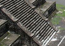 В дебрях Гондураса открыта никому неизвестная цивилизация: находками усыпана вся земля