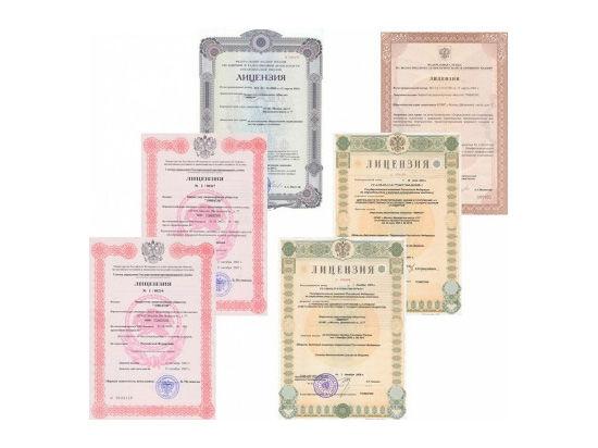 Открытие первого портала  о лицензировании деятельности в РФ