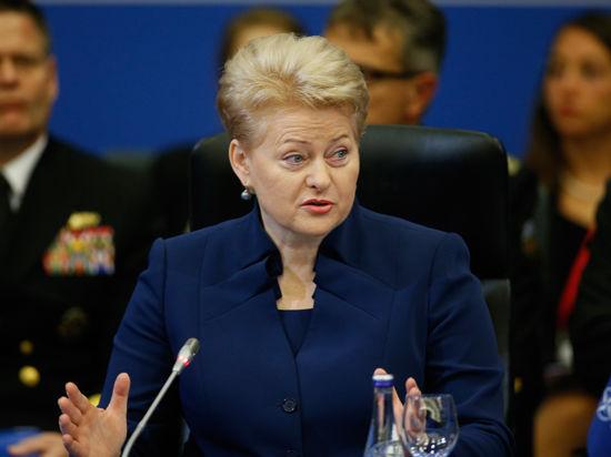 Глава Литвы не видит разницы между Путиным и террористами из