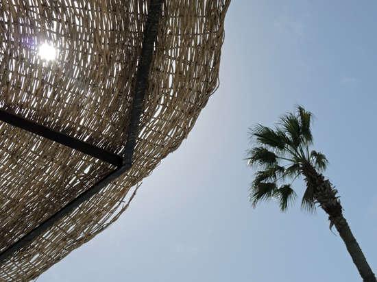 «Бархатный сезон» испорчен, забудьте! Разрабатываемый правительством закон в сфере туризма не заработает и в сентябре
