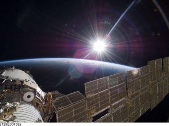 В космосе найден живой земной планктон