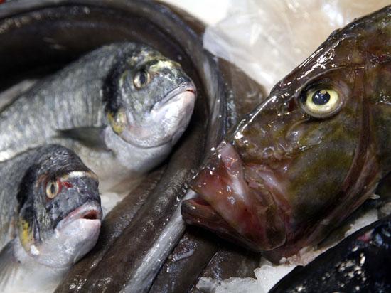 Мясо и рыба, за которую уже заплачено, может сгнить на таможне
