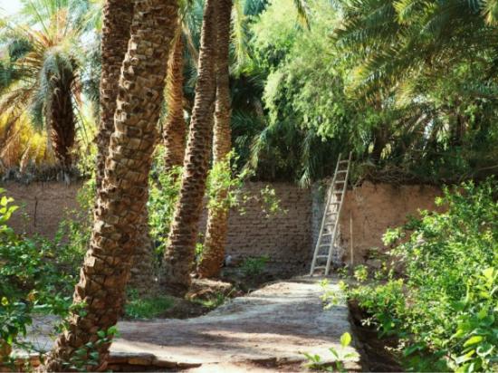 Черные копатели обнаружили в Иране древний город лилипутов