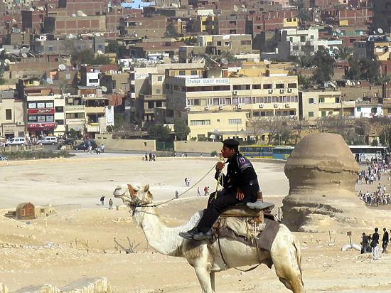 Чем прославится новая столица Египта: крупнейший в мире парк и «солнечные фермы»