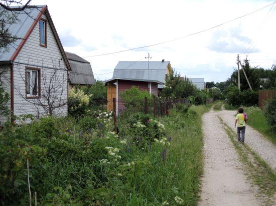Многодетным москвичам хотят раздать земельные участки