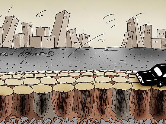Беспредел с вырубкой зеленых насаждений в Чувашии берет под контроль ОНФ