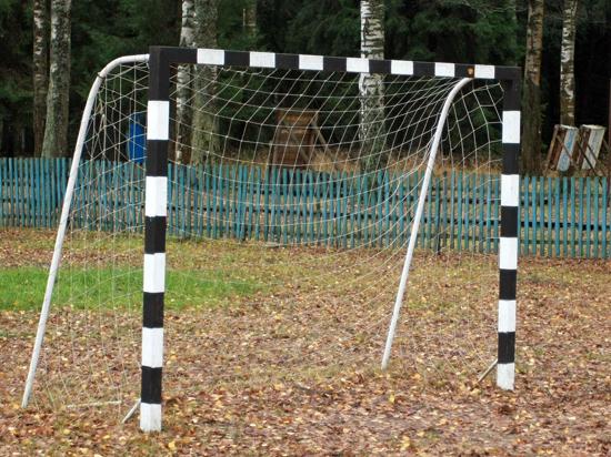 В Москве ребенка убило футбольными воротами