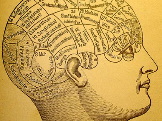 Группа ученых заявила, что человеческое сознание - это обыкновенное квантовое состояние материи