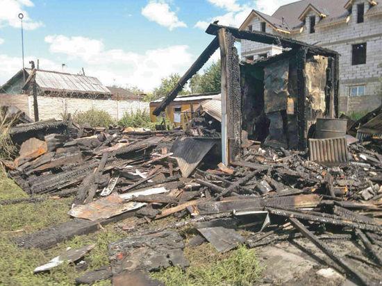 В Подмосковье сгорел частный приют для животных: 150 жертв