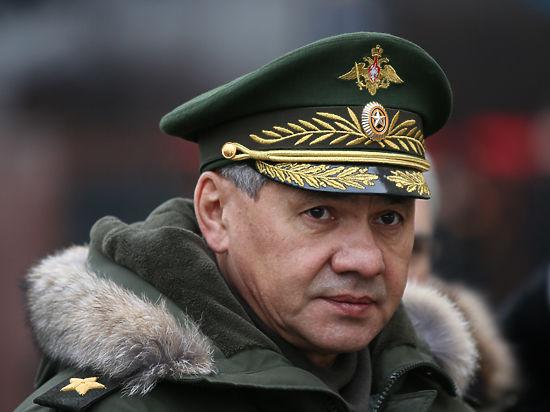 Шойгу доложил Путину, как армия будет развиваться в 2015 году