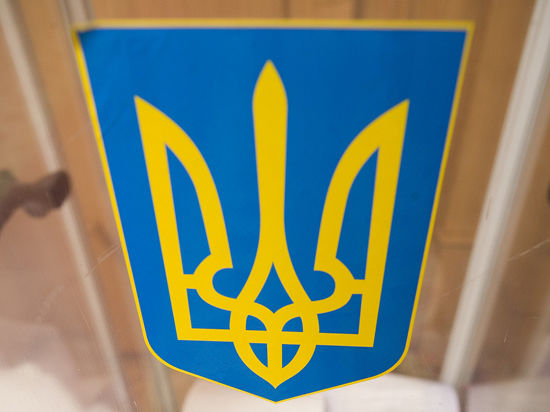 """Молодые лимоновцы напали на посольство Украины с """"пиротехническим изделием"""""""