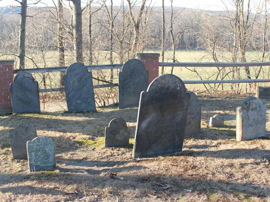 Продам место с видом: в России могут появиться частные кладбища