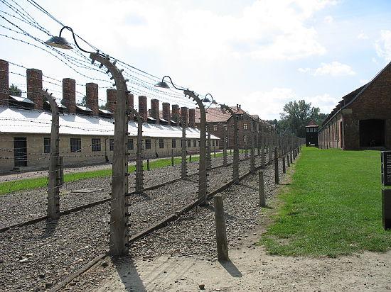 Молоденькому советскому офицеру не удалось найти общий язык с освобожденными им узниками концлагеря
