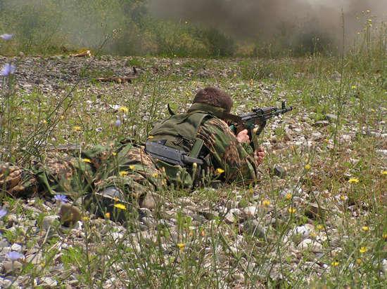 Украинские силовики подняли