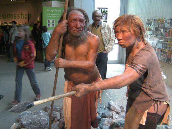 Фекалии неандертальцев свидетельствуют в пользу их всеядности