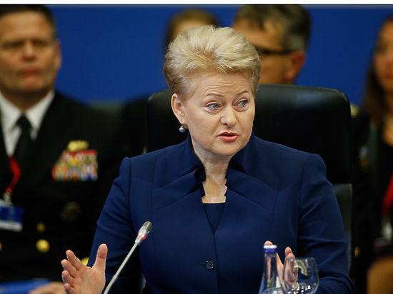 В Госдуме РФ могут рассмотреть предложение о разрыве дипотношений с Литвой