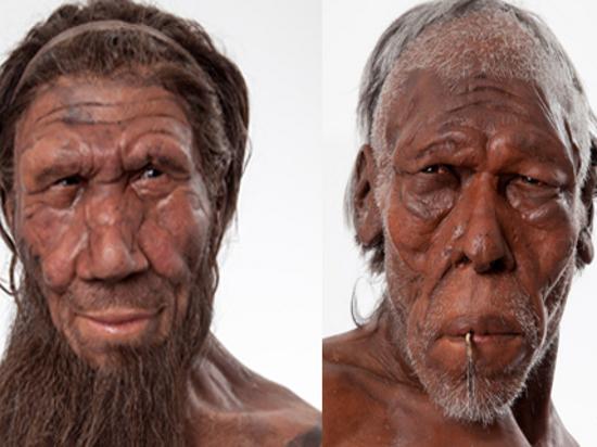 Неандертальцы соседствовали и смешивались с людьми несколько тысяч лет