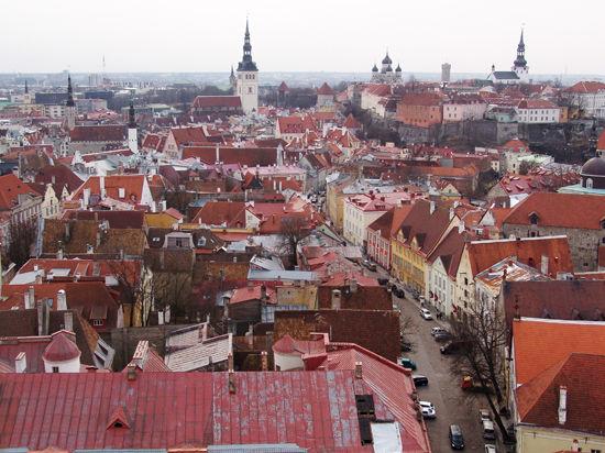 На ведущий музфорум в Эстонии Дмитрий Бертман отправил три фуры декораций