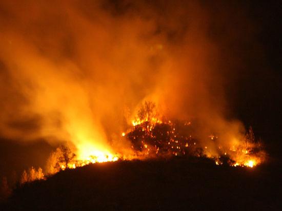 МЧС России: в Брянской области выявлено два новых очага природных пожаров