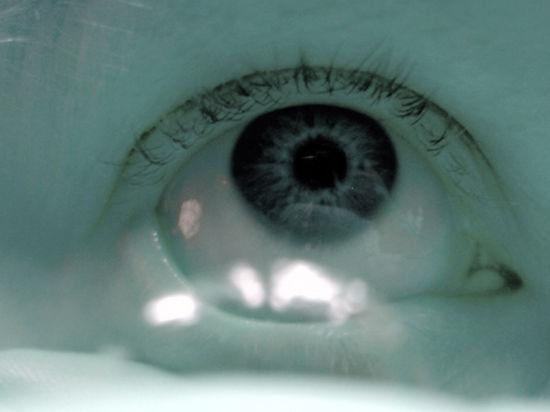 Они способны нейтрализовать действие кислот на глаза и тем самым сохранить зрение