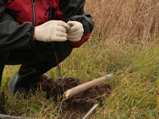 Археология доказывает: российские сибиряки – предки американских индейцев