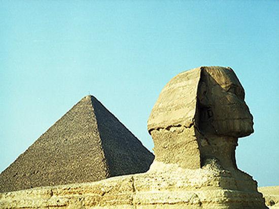 Древнеегипетских животных погубили климат и цивилизация