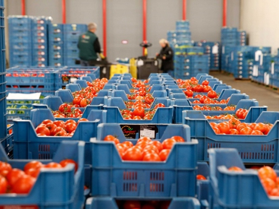 Партии фруктов и овощей отправлялись без указания страны происхождения или с указанием разрешенных