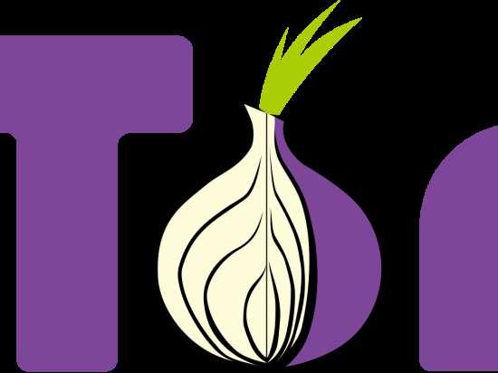 Группа хакеров несколько месяцев взламывала анонимную сеть Tor