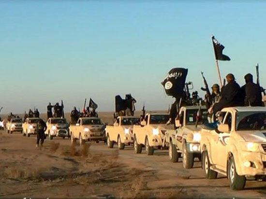 Войска коалиции против «Исламского государства» обоснуются в Турции