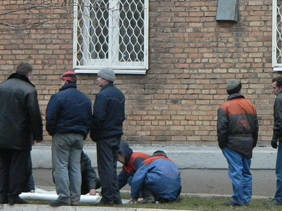 Москвич наказал собаку  за лужу, выбросив из окна