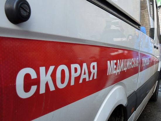 Убийство ребенка в Бирюлево: девочка стала жертвой педофила