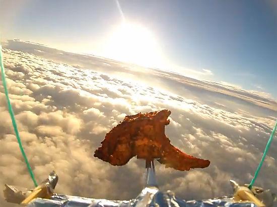 Баранью отбивную отправили в космос: видео полета развеселило Интернет