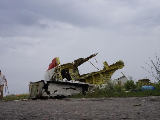 Большинство россиян винят в гибели малайзийского «Боинга» украинскую армию