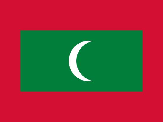 После инцидента с сыном депутата Селезнева МИД советует россиянам хорошо подумать, прежде чем посещать Мальдивы